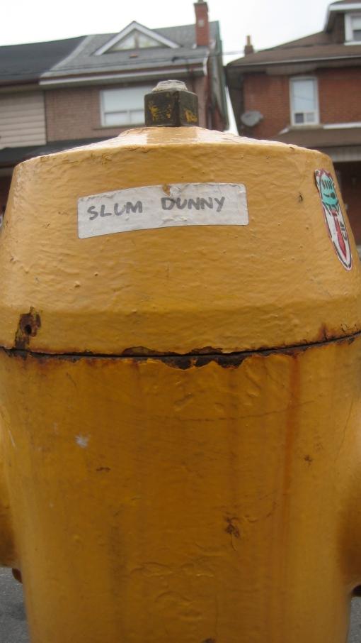 slumdunny